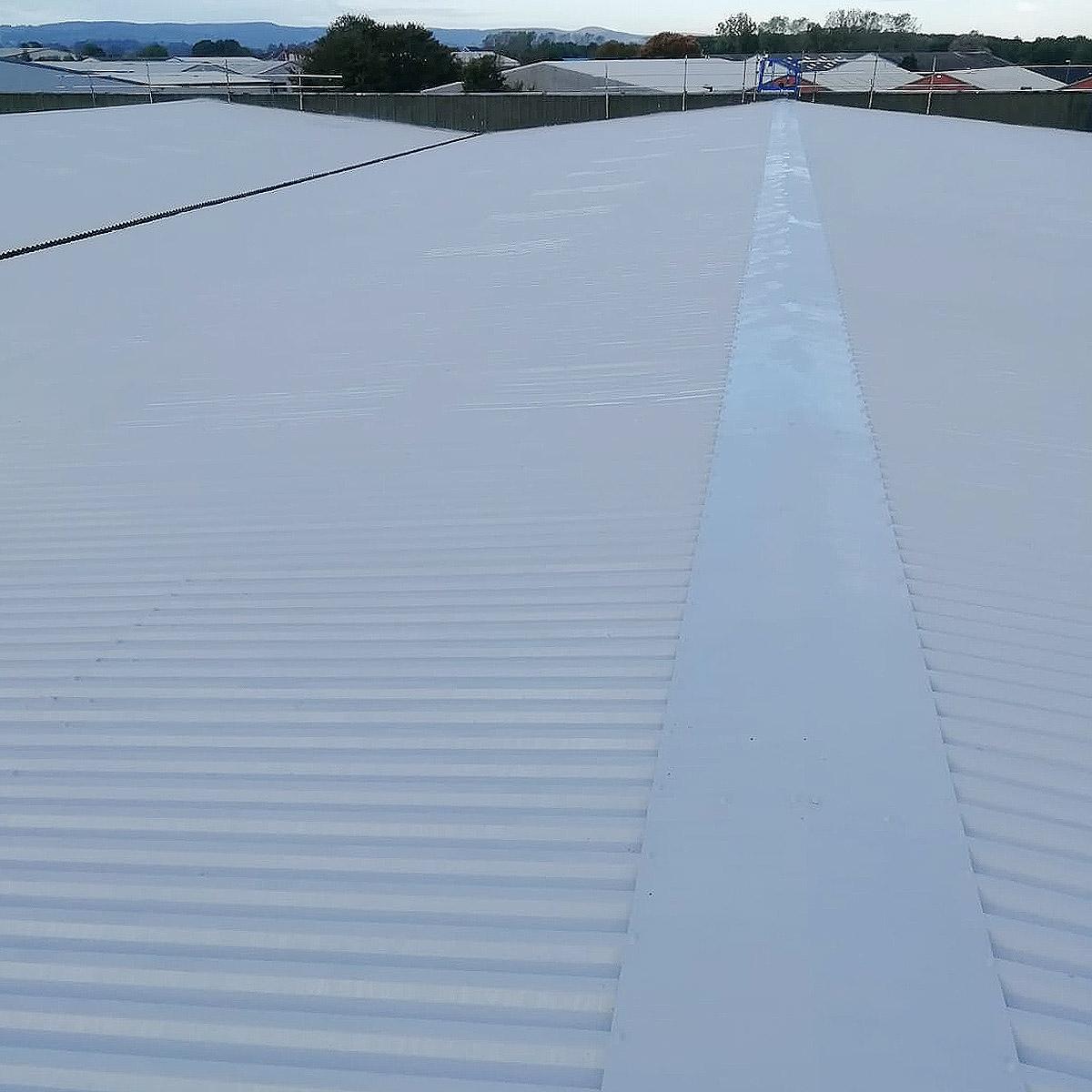 roof overpaint bridgewater complete